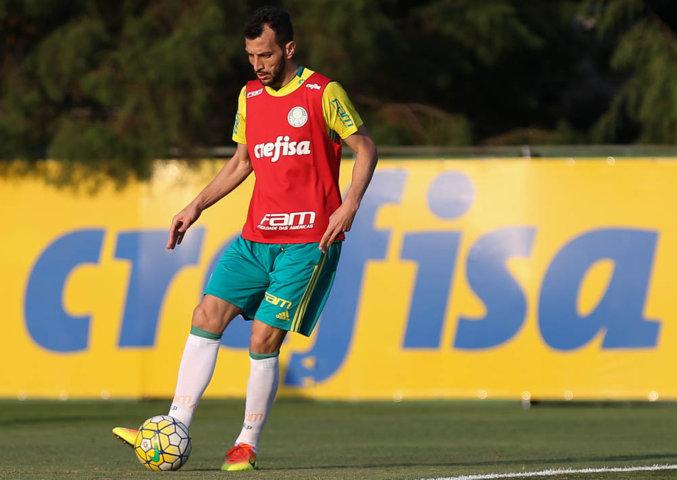 Edu Dracena treinou com bola normalmente. (Cesar Greco/Ag.Palmeiras/Divulgação)