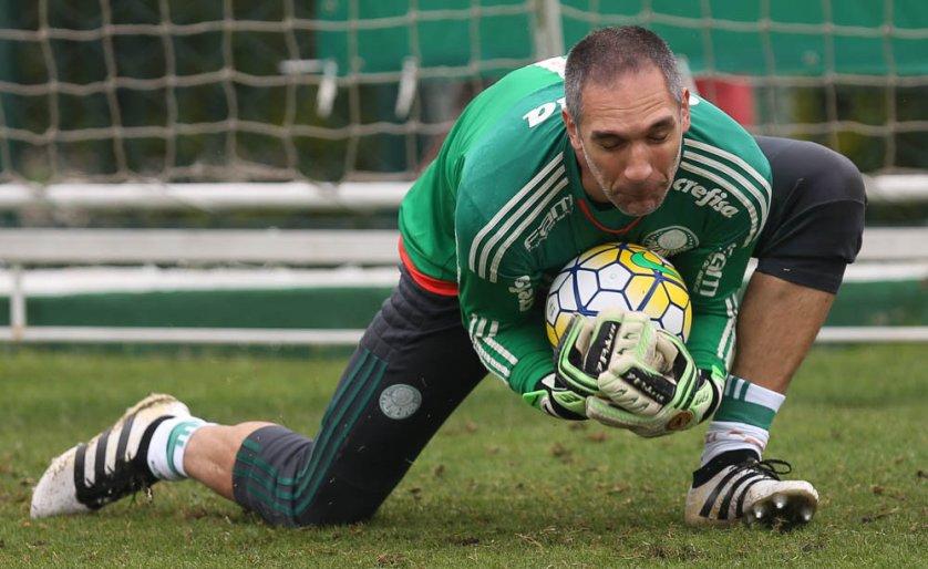 O goleiro Fernando Prass voltou ao gol no treino técnico desta sexta-feira (25). (Cesar Greco/Ag Palmeiras/Divulgação)