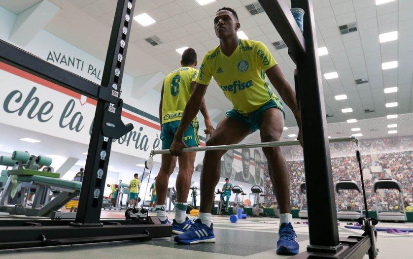 Elenco trabalhou por duas horas na sala de musculação do centro de excelência da Academia de Futebol na manhã desta segunda-feira (23). (Cesar Greco/Ag Palmeiras/Divulgação)