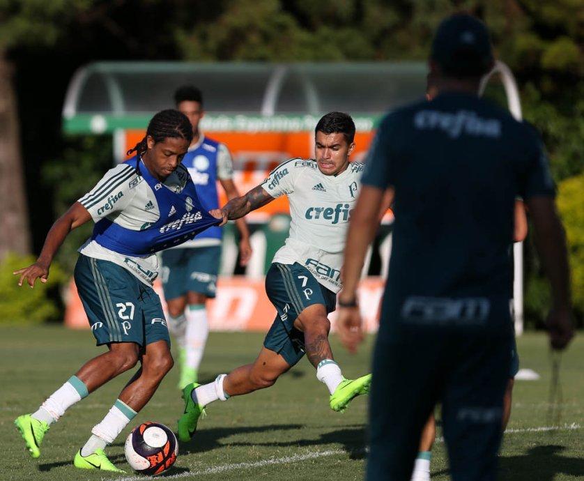 Palmeiras realizou atividade tática nesta quarta-feira (01). (Cesar Greco/Ag.Palmeiras/Divulgação)