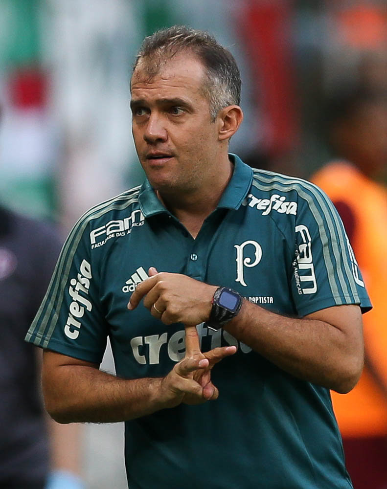 Técnico Eduardo Baptista rasgou elogios aos atletas do Alviverde no duelo contra o São Paulo. (Cesar Greco/Ag. Palmeiras/Divulgação)
