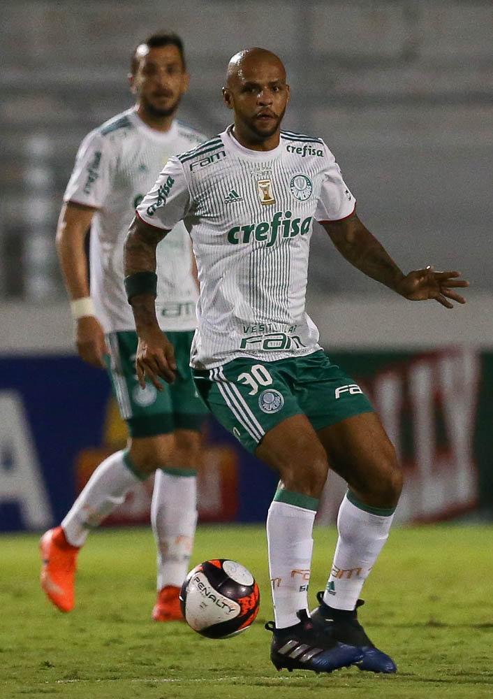 Felipe Melo foi titular diante da Ponte Preta nesta quarta (29). (Cesar Greco/Ag. Palmeiras/Divulgação)