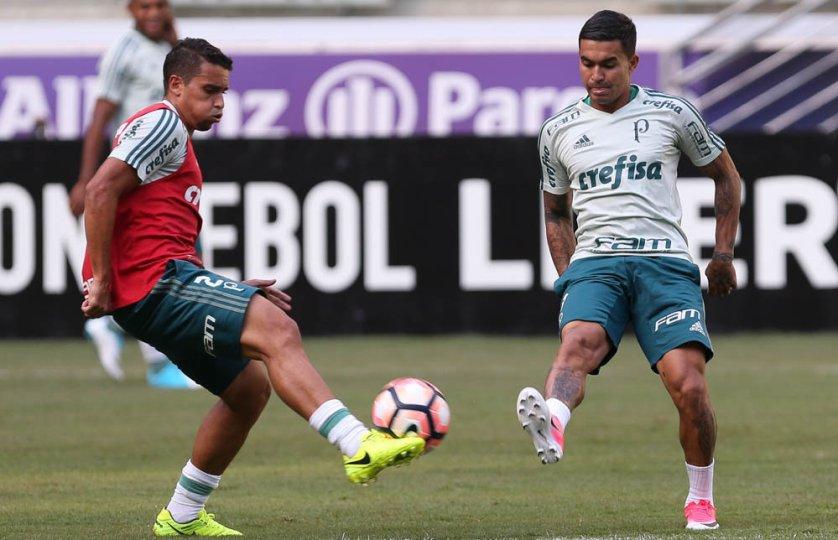 O Verdão é o líder do Grupo 5 da Libertadores, com quatro pontos. (Cesar Greco/Ag. Palmeiras/Divulgação)