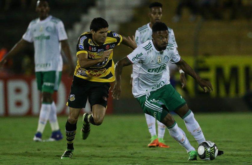 Felipe Melo comemorou vitória pelas quartas do Paulistão. (Cesar Greco/Ag. Palmeiras/Divulgação)
