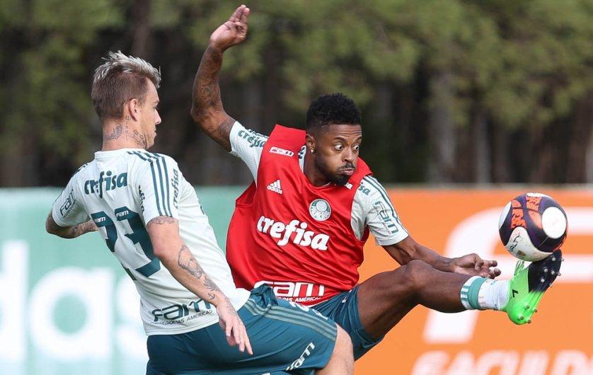 Palmeiras realizou o último treino antes de encarar a Ponte Preta. (Cesar Greco/Ag. Palmeiras/Divulgação)