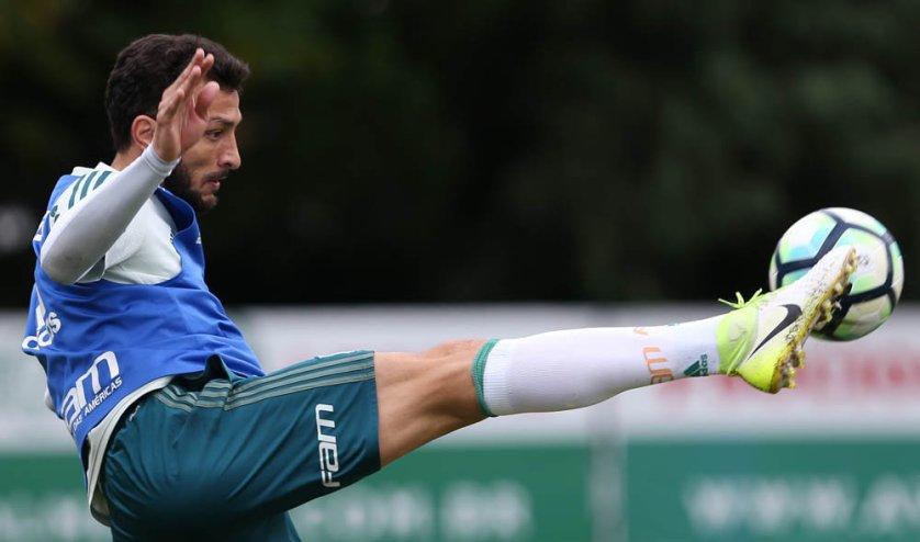 Poupado contra o São Paulo, Dracena é opção para pegar o Inter. (Cesar Greco/Ag Palmeirass/Divulgação)