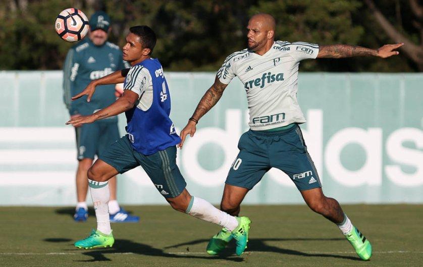 Palmeiras iniciou quarta de dois períodos com treinos físico e técnico. (Cesar Greco/Ag Palmeiras/Divulgação)