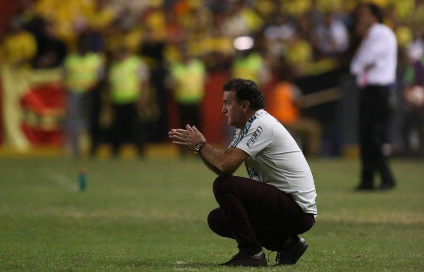 Cuca se mostrou otimista com o jogo de volta. (Cesar Greco/Ag. Palmeiras/Divulgação)