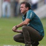 Cuca elogia postura do Palmeiras em Minas e valoriza: 'Dá confiança'