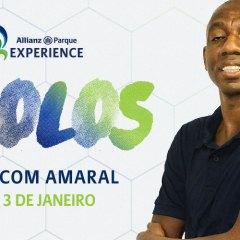 Allianz Parque Experience apresenta Ídolos Tour com Amaral
