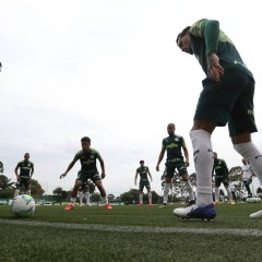 Pré-jogo: Palmeiras x Bahia – Campeonato Brasileiro