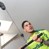Palmeiras trabalha parte física em reapresentação após classificação na Libertadores