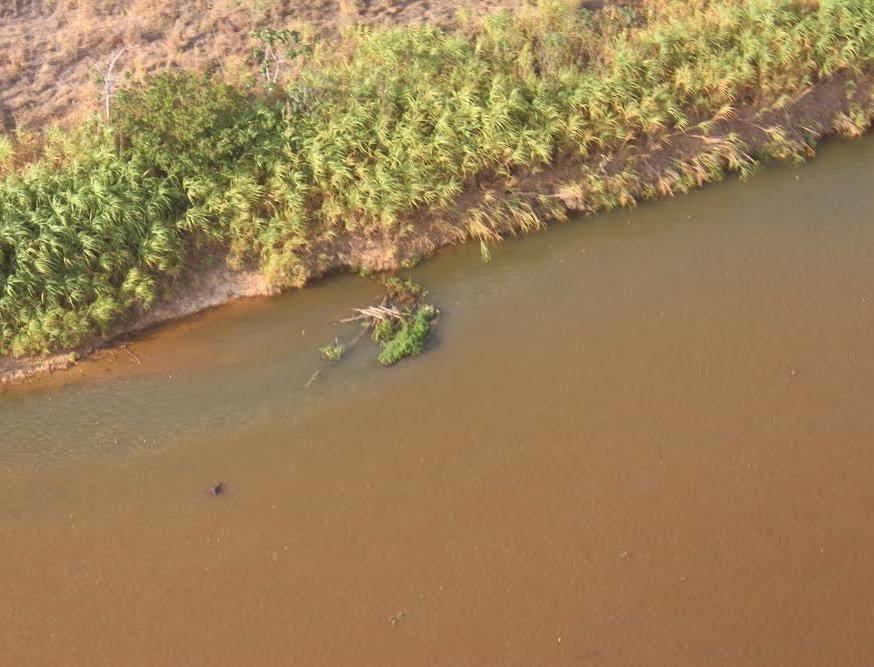 Poluição de lama que deve desaguar em Linhares trás poluentes que irão para o mar (Crédito: Giovani Pagotto)