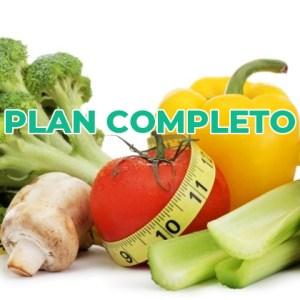 Dieta Plan completo