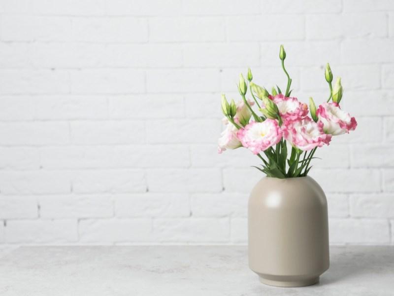 Garage Conversion Flowers