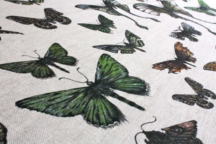 Entomologie-Moths-Original-Close.jpg