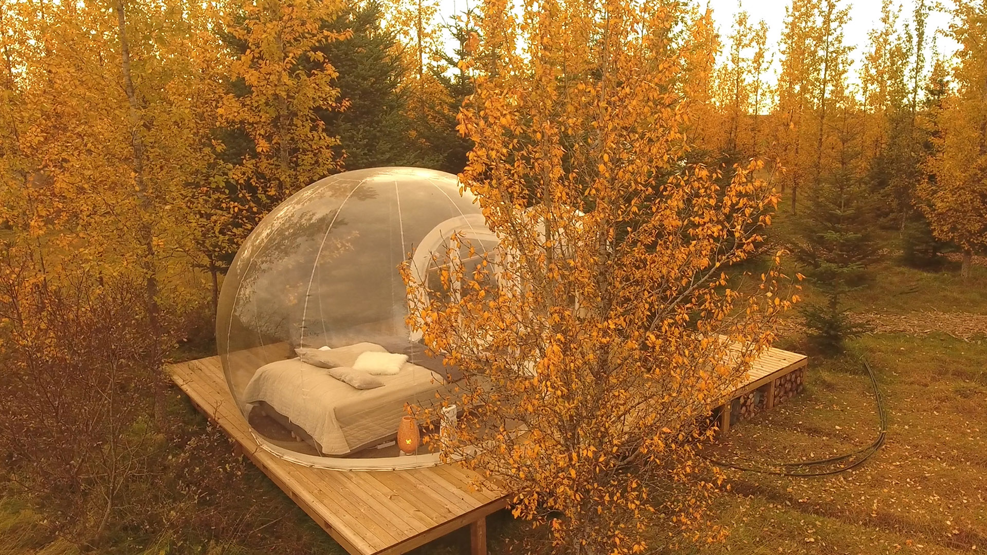 Are bubble hotels still a thing?