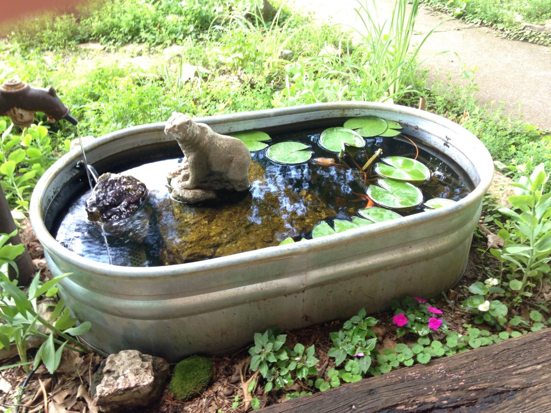 Mini Garden Pond Water Feature