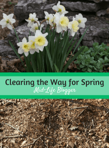 Clearing the Way for Spring