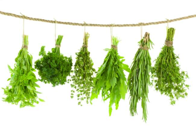 cooking with herbs, shopping for produce, entertaining friends, getting punk'd