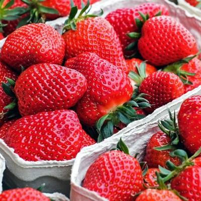 12 Delicious Strawberry Recipes