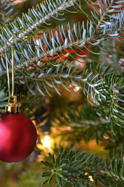 Simplify Your Holidays: Step Two