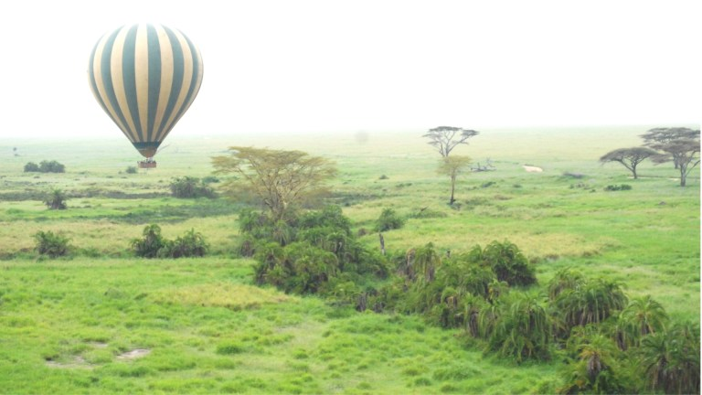 A balloon on the countryside