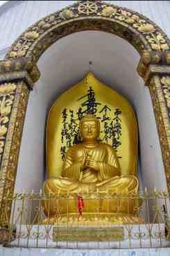 Buddha Statue in Peace Pagoda Pokhara
