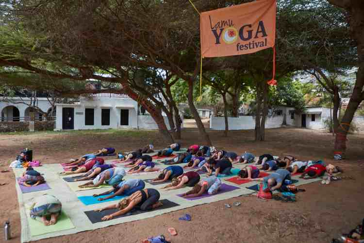 group doing a downward dog during yoga festival in Lamu