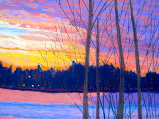 Autumn trees with multicolored sunset.