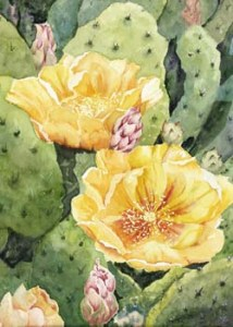 Yellow cactus flowers among prickly pear leaves.