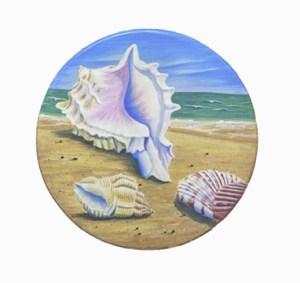 Seasheels on the beach.
