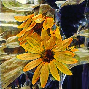 Yellow sunflowers drawn with colored pencils.