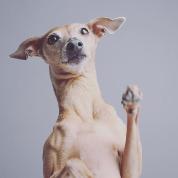 Samstag High five for the weekend