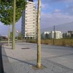 02barreiro-entourage-arbre_gr - barreiro_granit - Entourage d'arbre Mobilier urbain