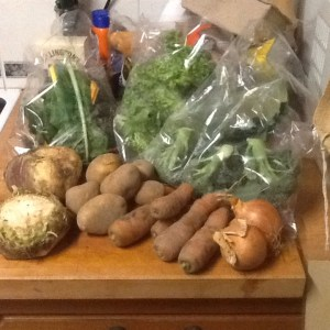 Midorigreen.co.uk veg bag contents