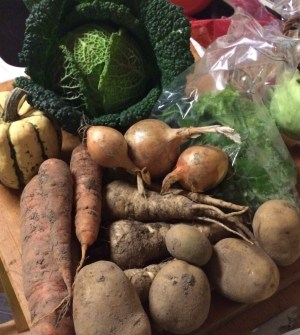 Veg box contents carrots cabbage squash potatoes parsnip onions midorigreen.co.uk