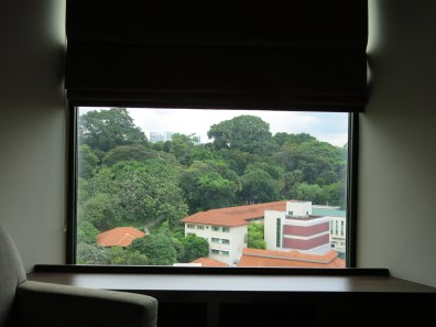 This one is taken from the room I stayed in at Peninsula Excelsior in Singapore. Great location, great room, great sights. In front of me is a portion of Singapore's National Archives (and also a fire station).