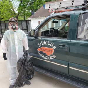 24 hour wildlife removal services north carolina