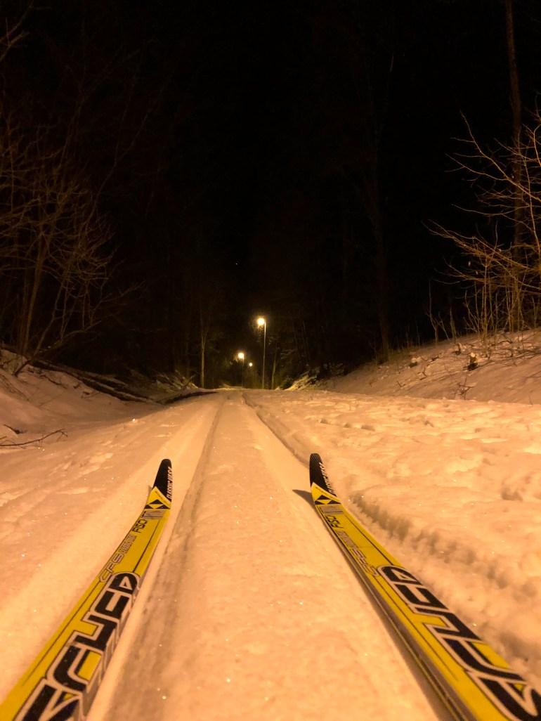 skiispor