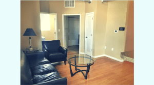 Updated, furnished, apartment living room