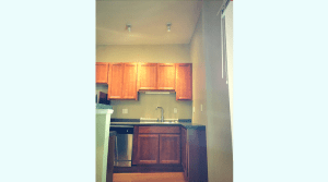 Updated kitchen in a downtown apartment
