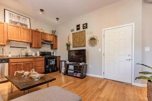 Kitchen and living space in an upscale apartment building