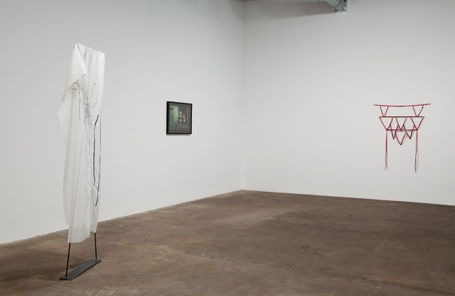 Ozzy, installation view.
