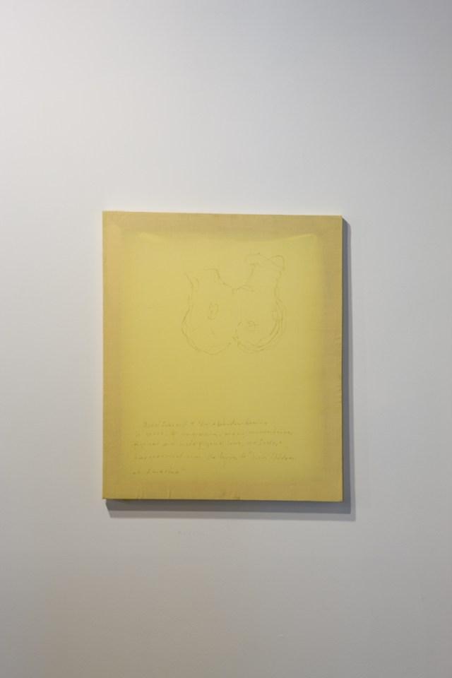 Untitled, 2007. Graphite on fabric.