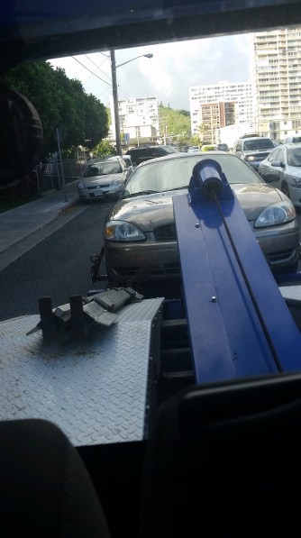 Torie the Taurus getting towed