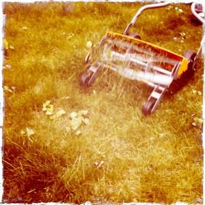 Fiskars lawn mower