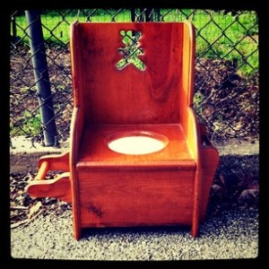 elaborate potty seat