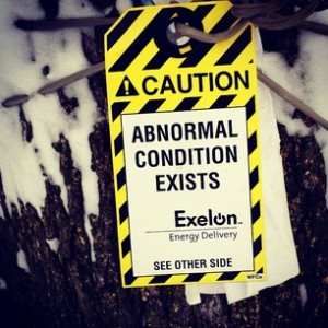 a sign hanging on a tree