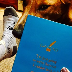 Dog and foot and book
